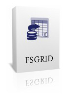 FSGrid