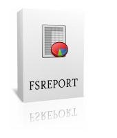 FSReport